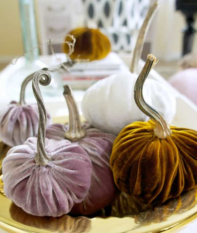 diy velvet pumpkins with dried stems