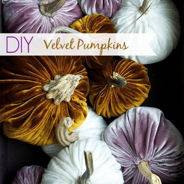 pumpkins-feature