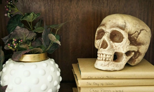 bookcase halloween decor