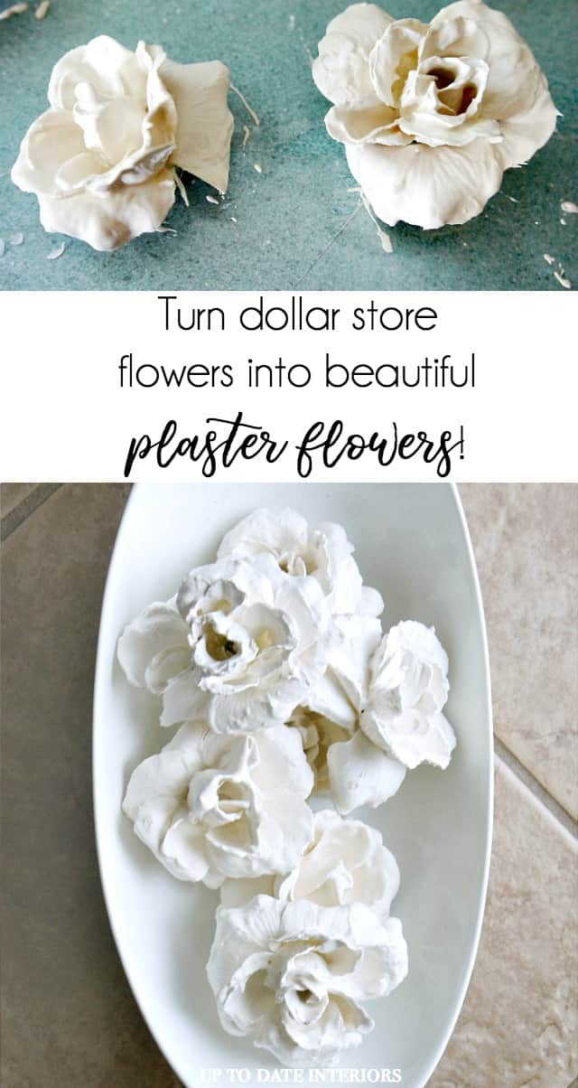 Beautiful And Easy Diy Plaster Dipped Dollar Store Flowers