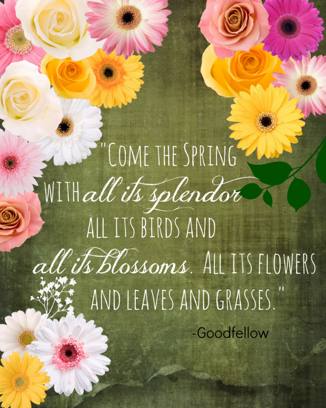 Spring-quote
