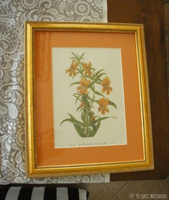 orange-framing-677x800