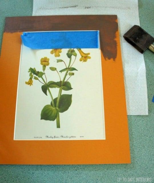 orange-paint-674x800