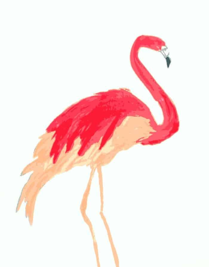 flamingo-finish-print