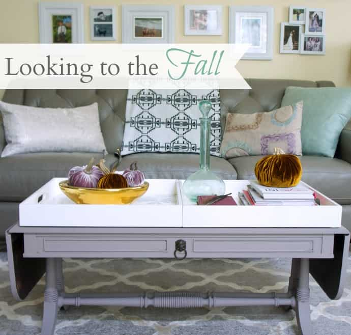 looking-to-fall