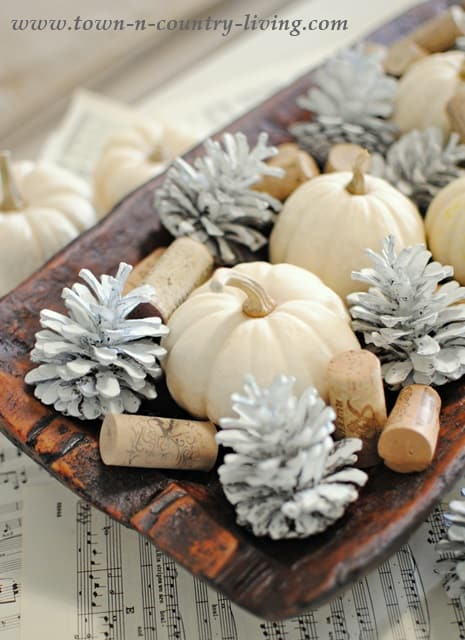 Fall-Arrangement-with-Babyboos-and-Pinecones
