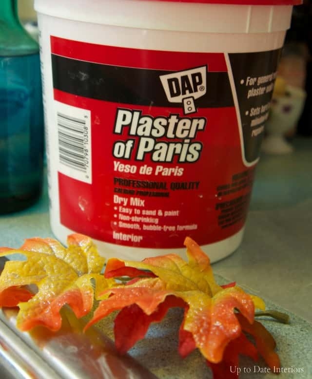 plaster-leaves-supplies