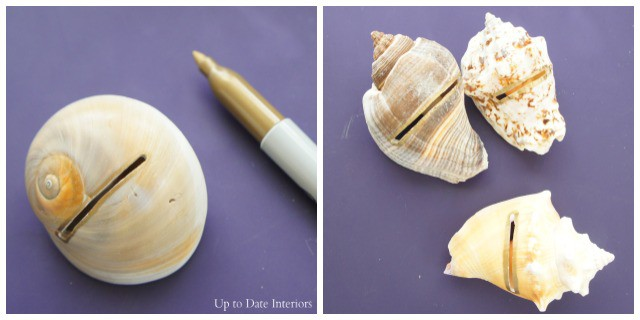seashell-holders-gold-pen
