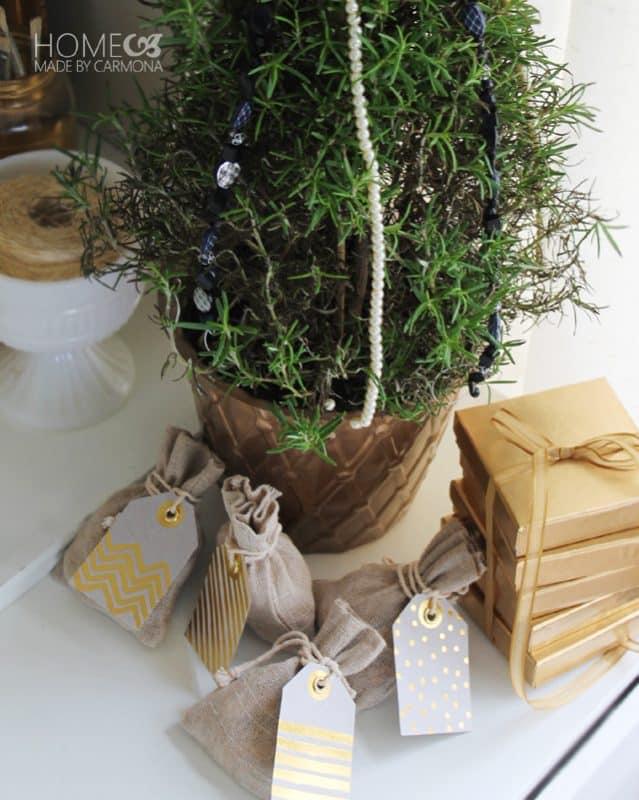 Rosemary bush as a mini tree