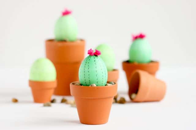 Cactus Easter Eggs 19 Of 300307 (1)