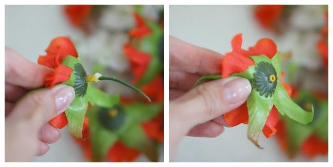 flowers-stem