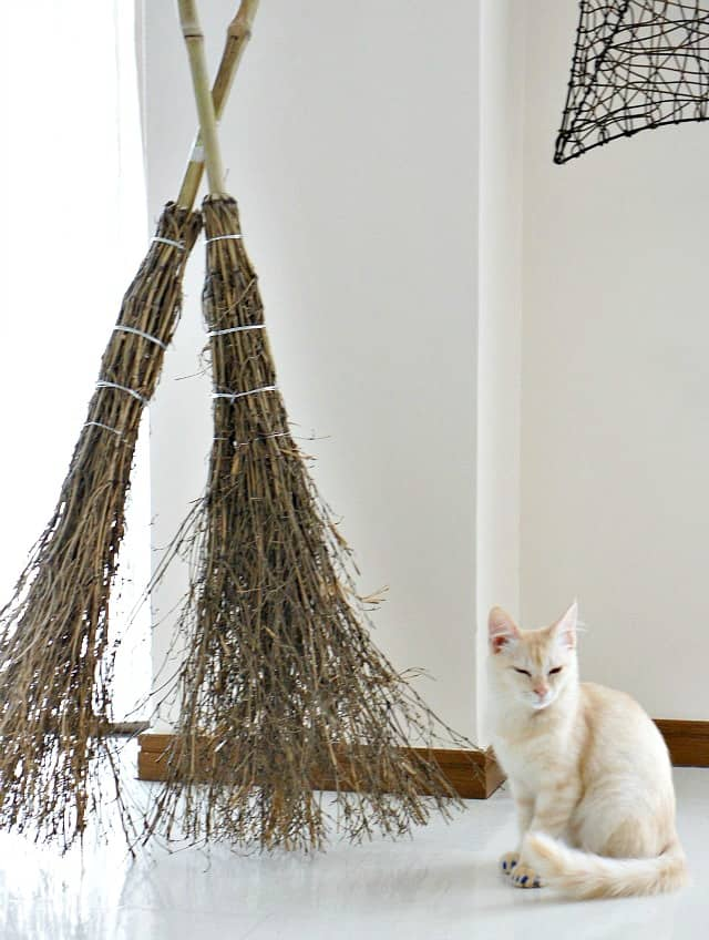 witches broom decor