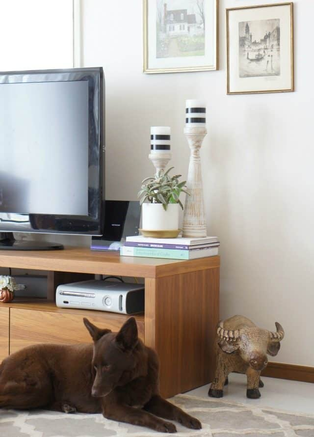 Modern Tv Stand Decor and puppy