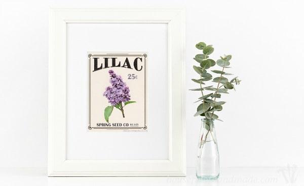 Free-Printable-Vintage-Seed-Packet-Art-2