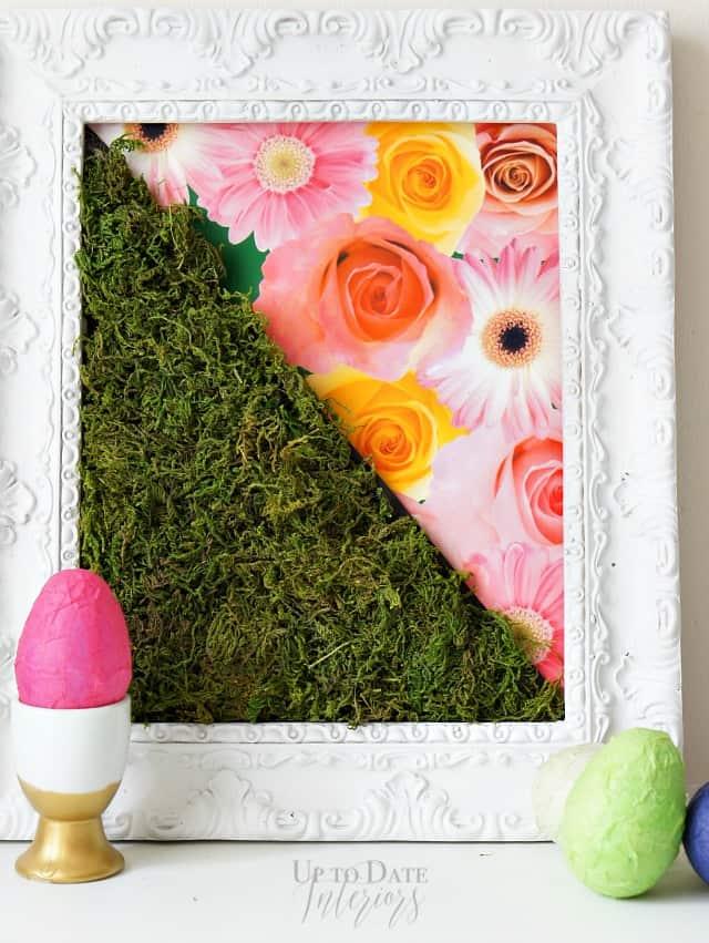 DIY spring moss art
