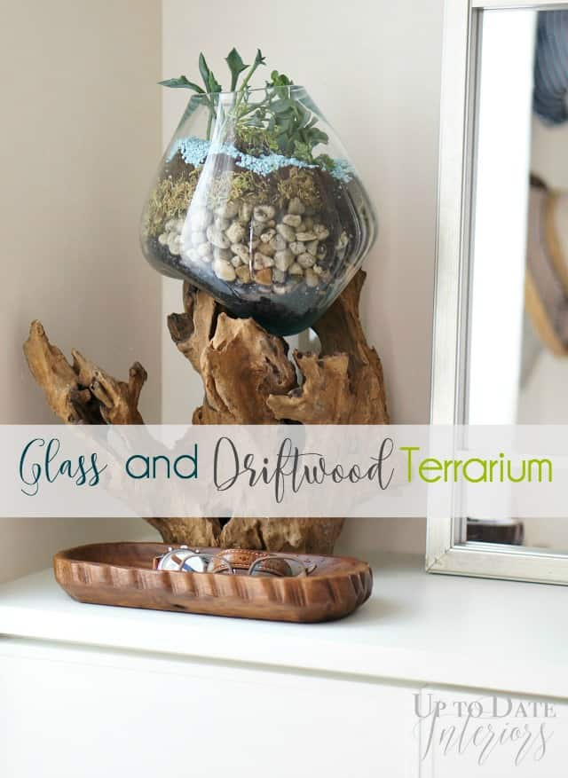 Diy terrarium with glass and wood