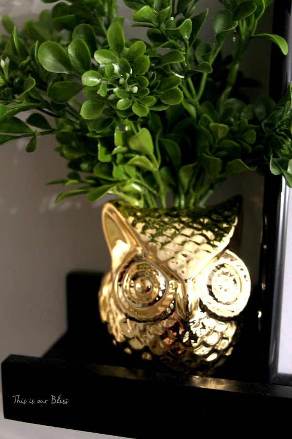 brass-owl-planter-gold-owl-bathroom-update-bathroom-decor-this-is-our-bliss (1)