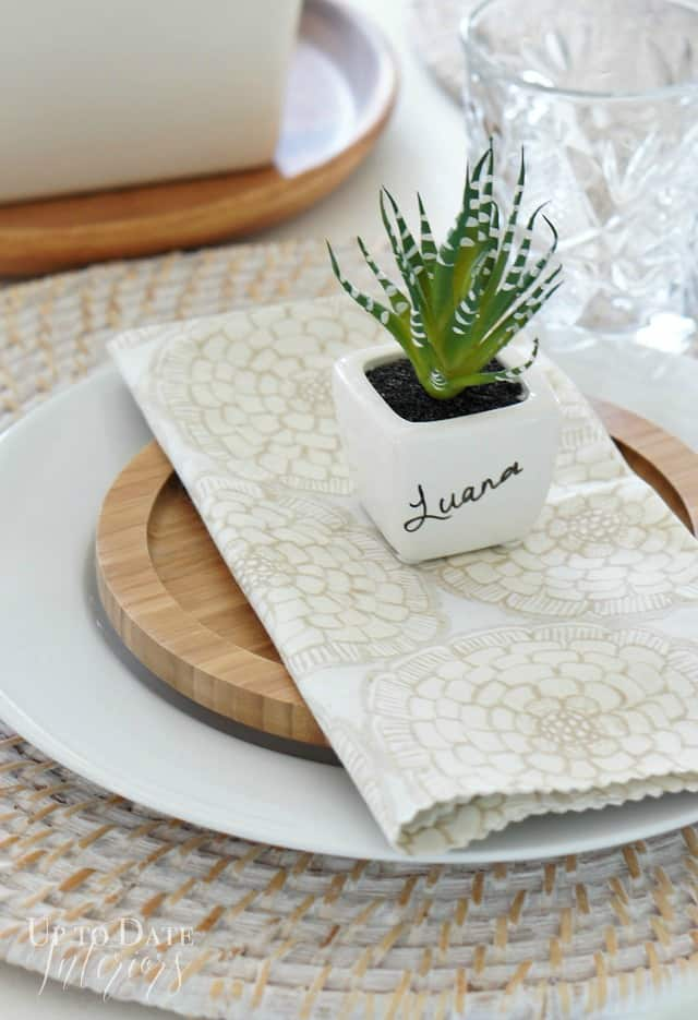 Dollar store succulent place card holder