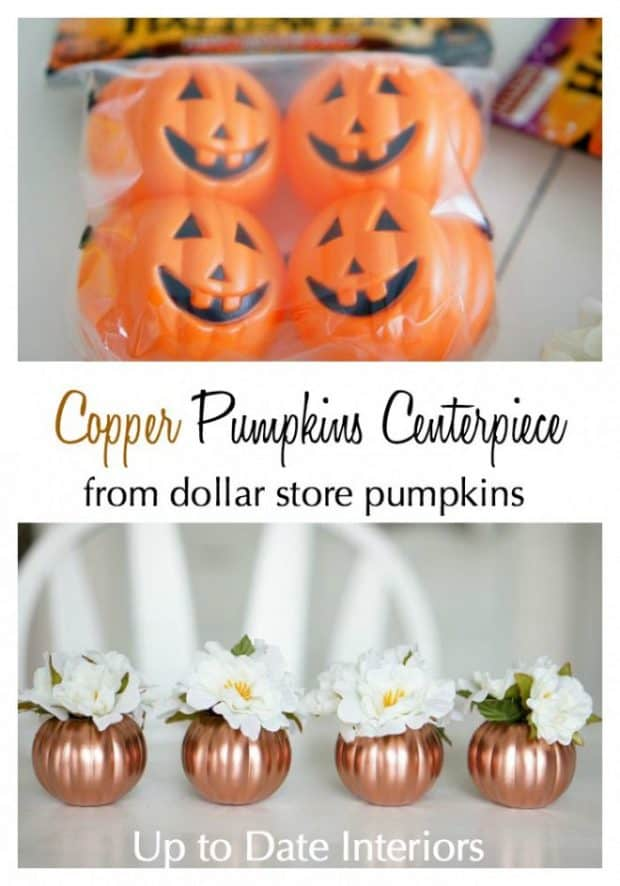 copper dollar store pumkins