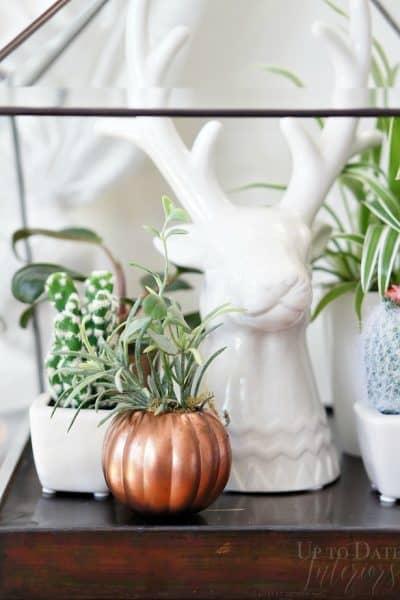 copper pumpkin planter and deer terrarium