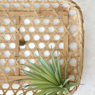 thrifted basket with faux succulent