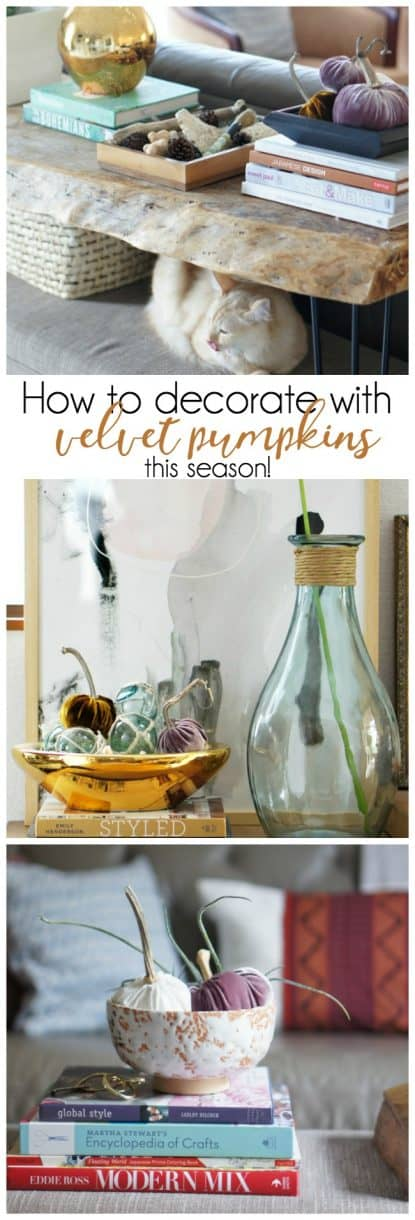 how-to-decorate-velvet-pumpkins