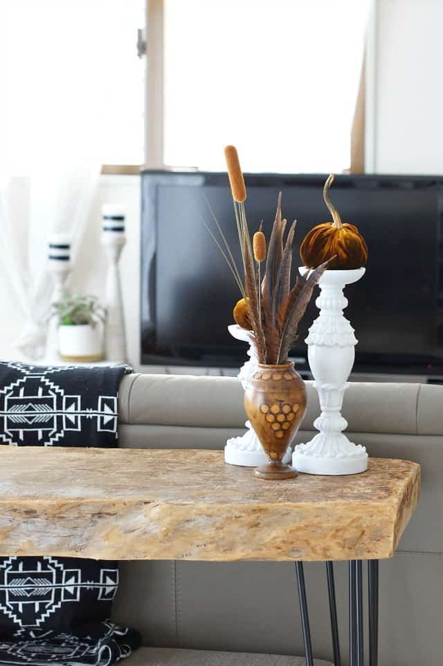 sofa-table-tall-transition with brown velvet pumpkins and real stems