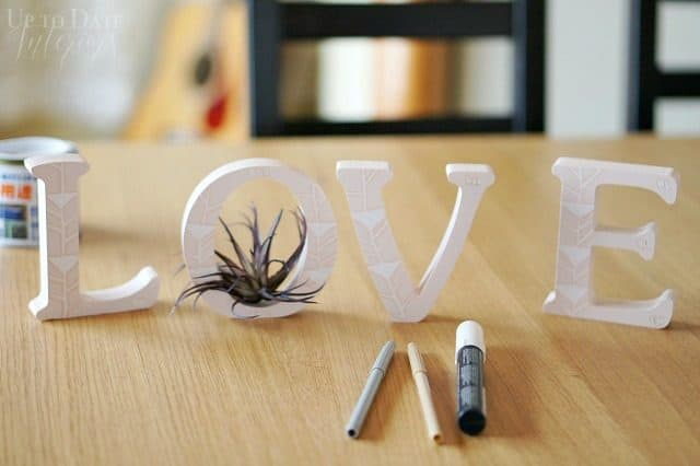 love-letters-with-air-plant-diy-dollar-store-valentines-day-1.