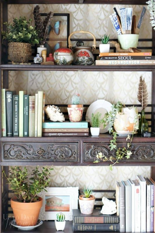 books-plants-bookcase