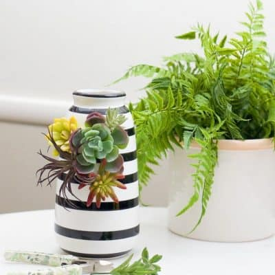 Succulent Vase Diy Fall 6