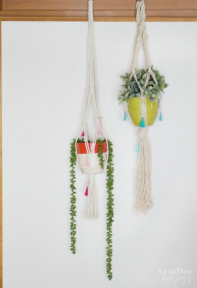 Anthro Inspired Plant Hangers Colorful