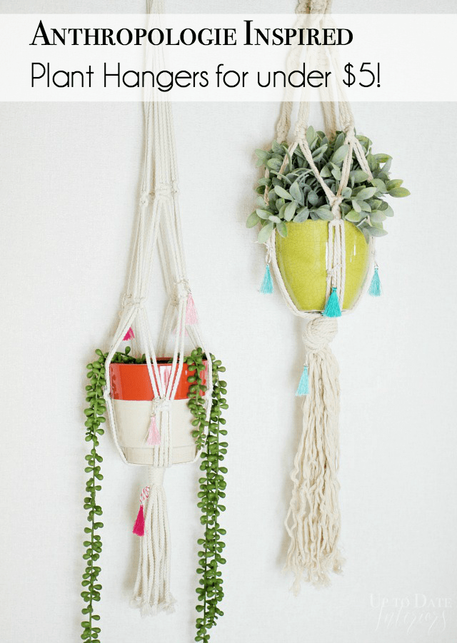 Anthropologie Knock Off Plant Hangers Pinterest