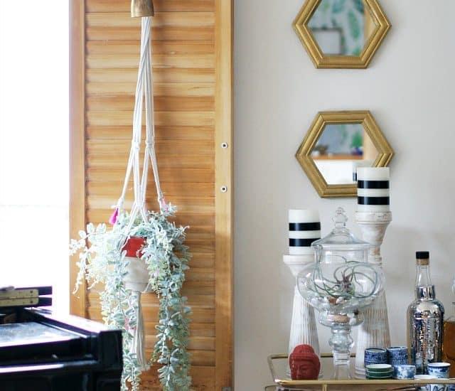 Where To Hang Plants