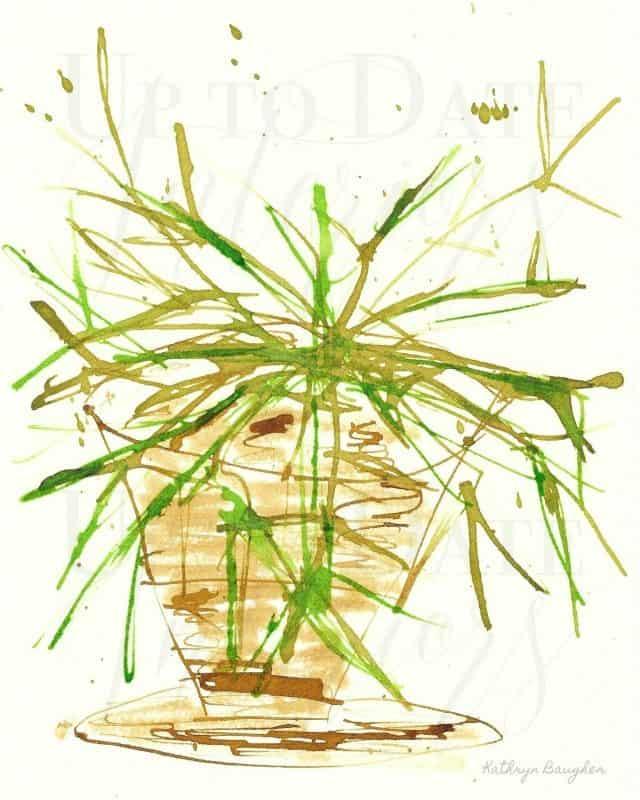 8x10 Pear Cactus Ink Illustration 640 Watermark