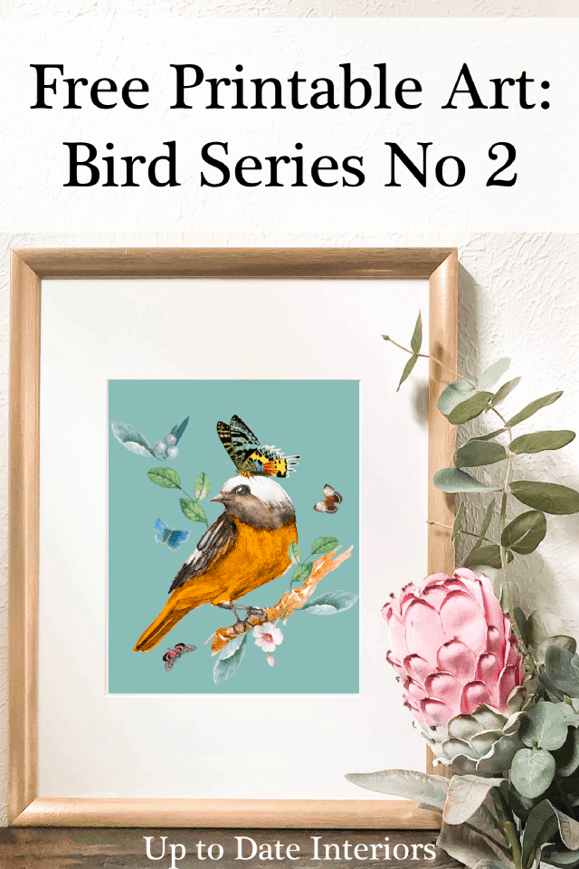Bird Series 8x10 Black Font Pinterest