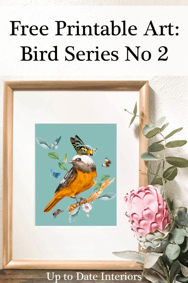 Bird Series 8x10 Black Font Pinterest