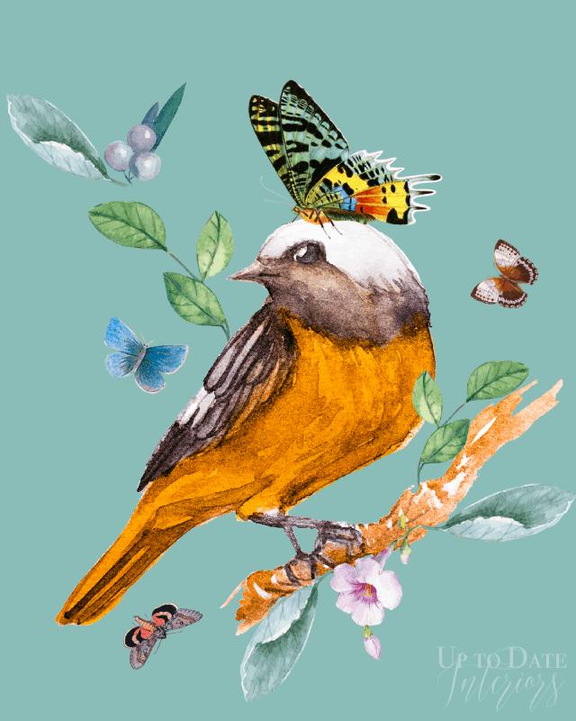 Bird Series No2 Watermarked 640
