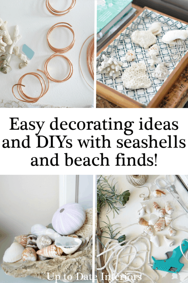 Seashell Decorating Ideas And Diys Black Pinterest