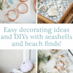Seashell Decorating Ideas And Diys Blue Pinterest