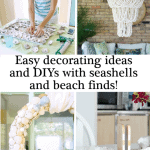 Seashell Decorating Ideas And Diys Pinterst Black Two