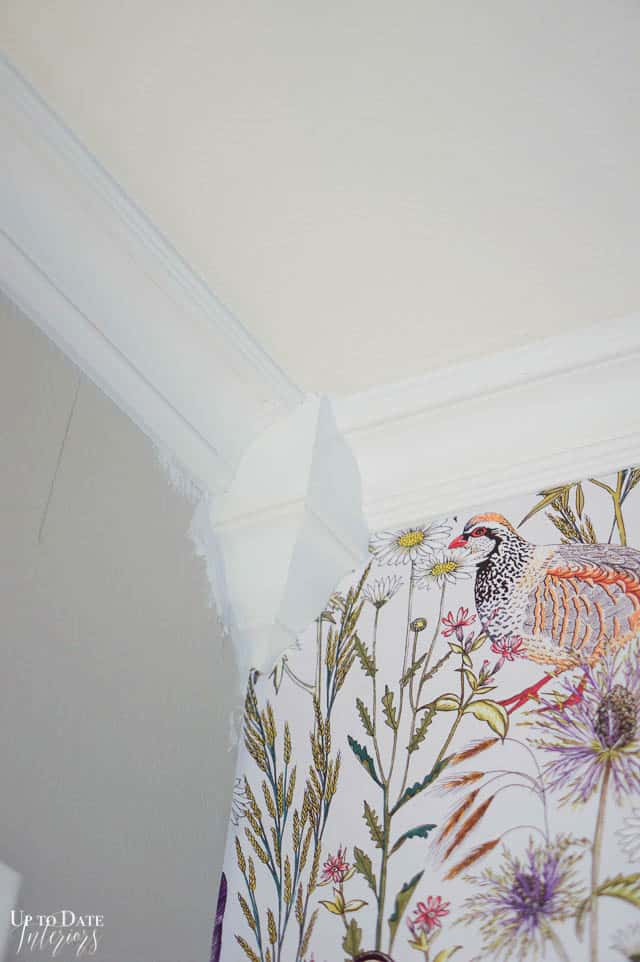 How To Install Cove Moulding Edited 4