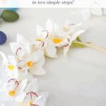 Orchid Wreath Pinterest Black