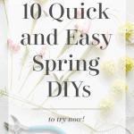 10 Spring Diys Black