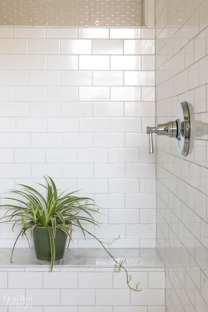 Spider plant on a shower bench with white and marble tiles.